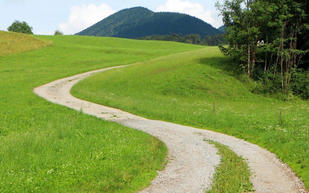 Velkommen med på den grønne rejse