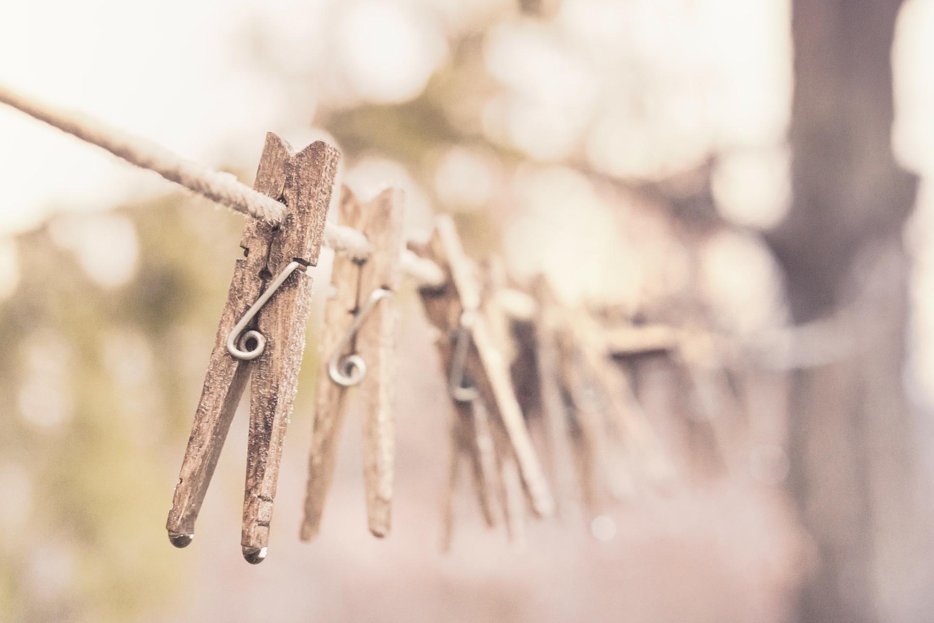 Organic laundry